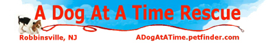 A Dog At A Time Rescue logo