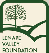 Lenape Valley Foundation logo